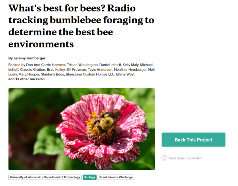 radio tagging bees.png